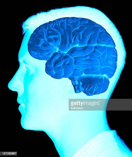 Exploración cerebral