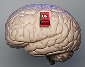 Brain with on switch