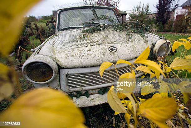 Branches of shrubs cover former East German car Trabant in a garden in Selmsdorf northern Germany on November 8 2012 The trabi built in 1971 has been...