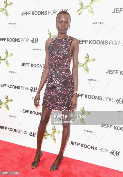 Brand Ambassador Alek Wek attends the HM Flagship Fifth Avenue Store launch event at HM Flagship Fifth Avenue Store on July 15 2014 in New York City