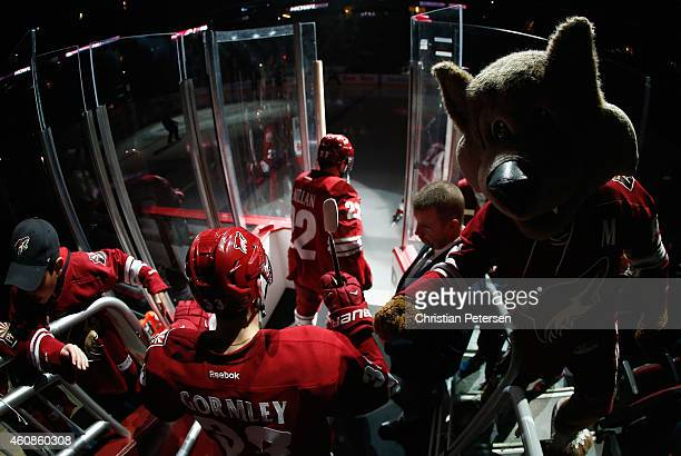 Brandon Gormley of the Arizona Coyotes highfives mascot 'Howler' as he skates onto the ice before the NHL game against the Anaheim Ducks at Gila...