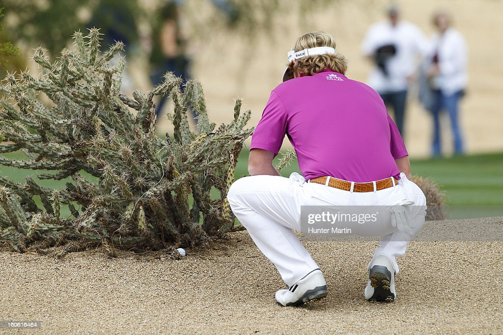 Brandt Snedeker finds his ball under a cactus on the 13th hole during the final round of the Waste Management Phoenix Open at TPC Scottsdale on February 3, 2013 in Scottsdale, Arizona.