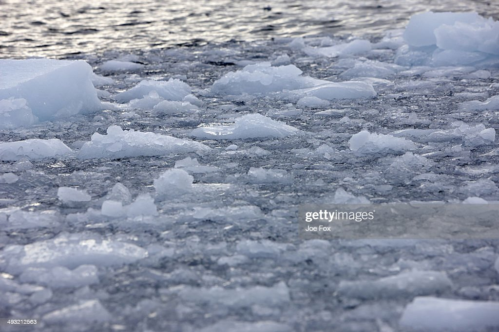 Brash sea ice forming on the edge of open water