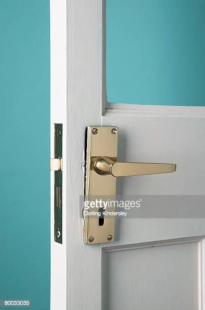 Brass handle on door