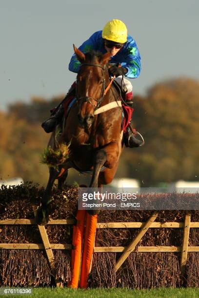 Brave Rebellion ridden by James Reveley during The Subscribe On Line At racingukcom Handicap Hurdle Race