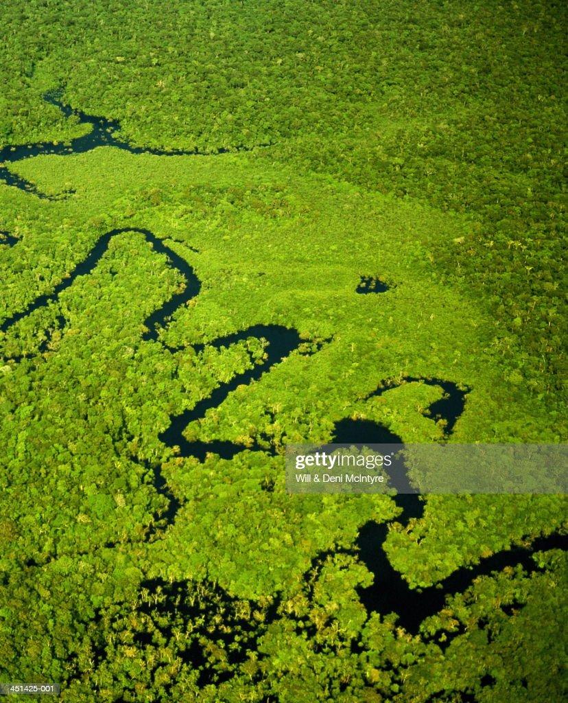 Brazil, Amazonas, tributary of Amazon River, aerial view
