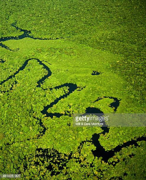 Brazil, Amazonas, tributary of Amazon River, aerial view