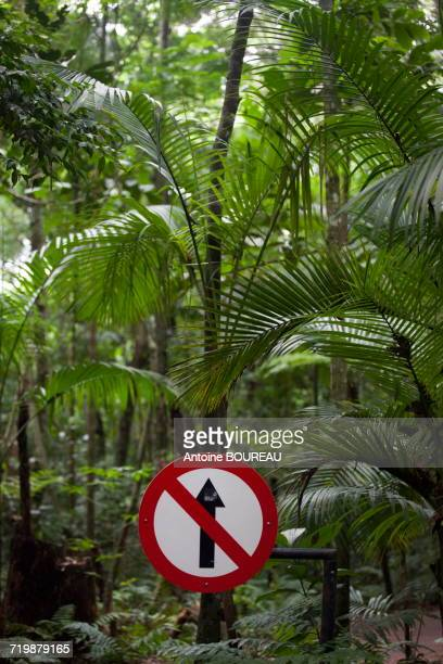 Brazil, Iguazu, Panel indicating a ban to continue to walk on a path and Mata Atlantica jungle in the birds park