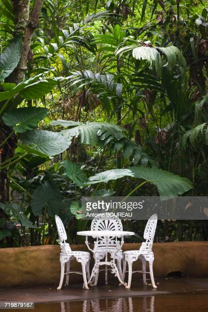 Brazil, Iguazu, white iron chairs and garden table in front of the forest Mata atlantica