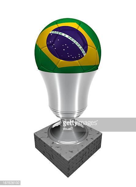 brazil soccer ball in a trophy