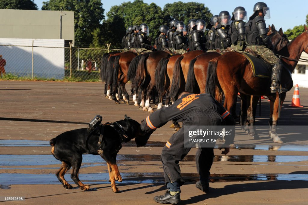 Brazilian Army soldiers mounted in riot gear and with trained dogs conduct a drill at the Fire Department headquarters in Brasilia, on May 3, 2013, as part of the security measures ahead of the Confederation Cup which will be held next June for the 2014 FIFA World Cup and the 2016 Olympics Games. AFP PHOTO / Evaristo SA
