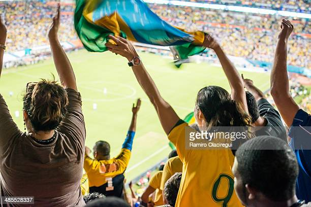 Brazilian fan celebrating goal.