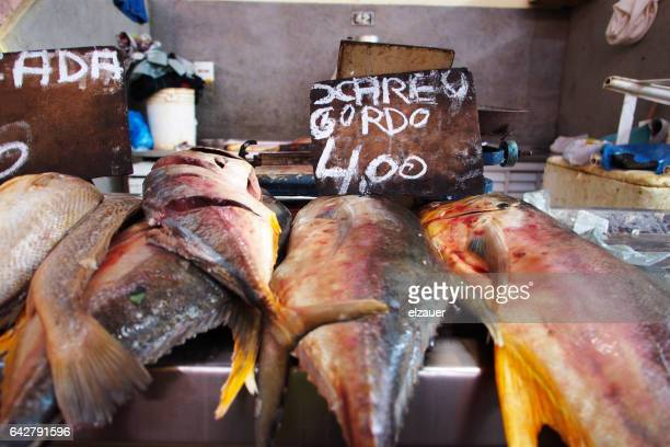 Brazilian fish market.