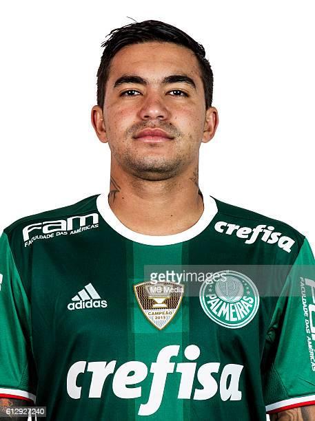 Brazilian Football League Serie A / Eduardo Pereira Rodrigues ' Dudu '