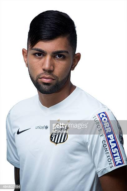 Brazilian Football League Serie A / Gabriel Barbosa Almeida