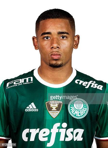 Brazilian Football League Serie A / Gabriel Fernando De Jesus ' Gabriel Jesus '