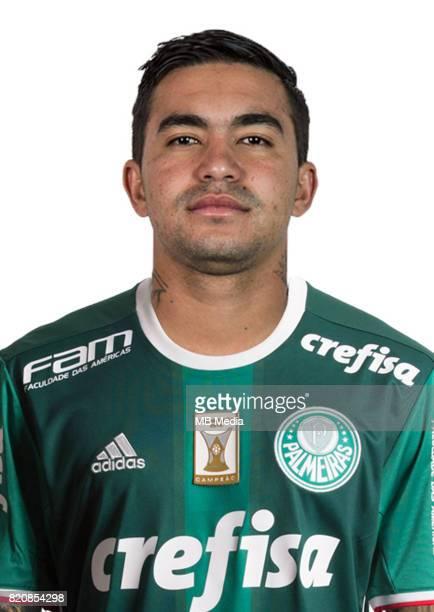 Brazilian Football League Serie A / 'n 'nEduardo Pereira Rodrigues Dudu