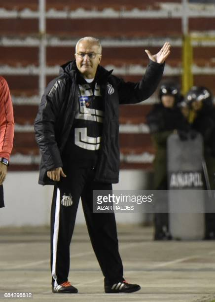 Brazilian Santos' coach Dorival Junior gestures during a Copa Libertadores football match against Bolivian The Strongest at Hernando Siles Stadium in...