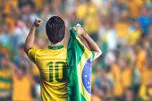 Brazilian player celebrate on the stadium