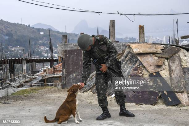 A Brazilian soldier in combat gear on patrol makes friendship with a dog during a predawn antigang operation in Niteroi greater Rio de Janeiro Brazil...