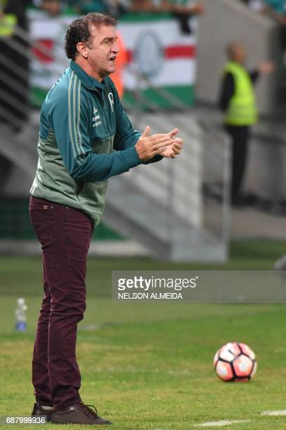 Brazil's Palmeiras team coach Cuca gestures during the 2017 Copa Libertadores football match against Argentina's Atletico Tucuman held at Allianz...