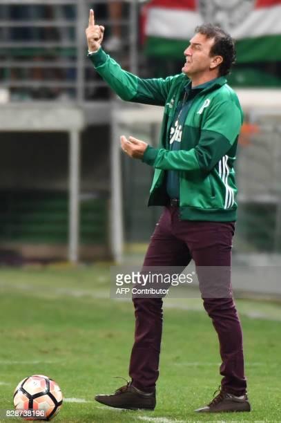 Brazil's Palmeiras team coach Cuca gestures during the 2017 Copa Libertadores football match against Ecuador's Barcelona held at Allianz Parque...