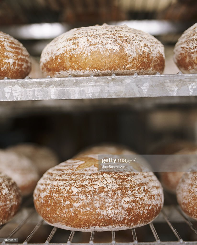 Bread in oven, close-up : Stock Photo