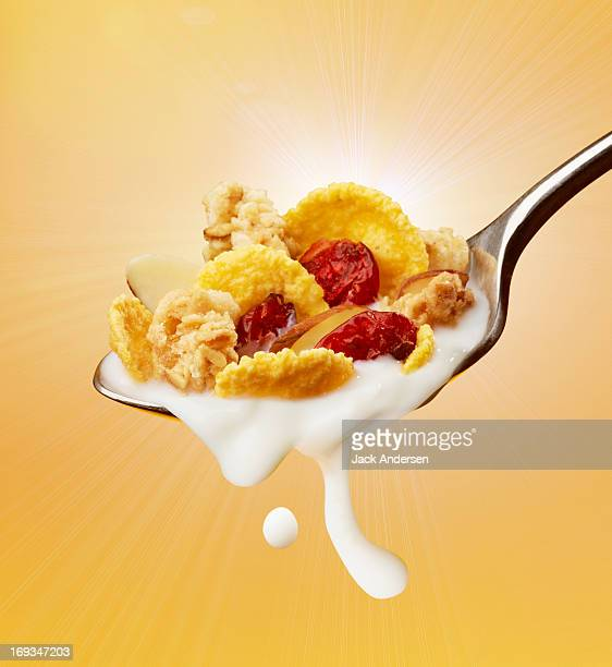 Breakfast Cereal