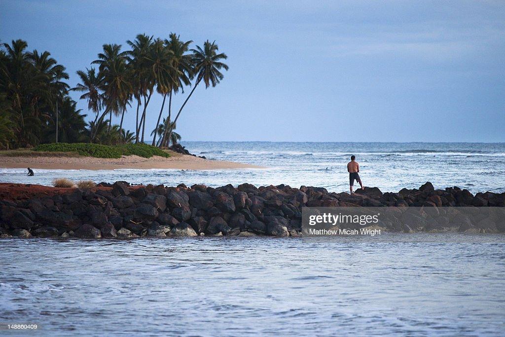 Breakwater and beach. : Stock Photo