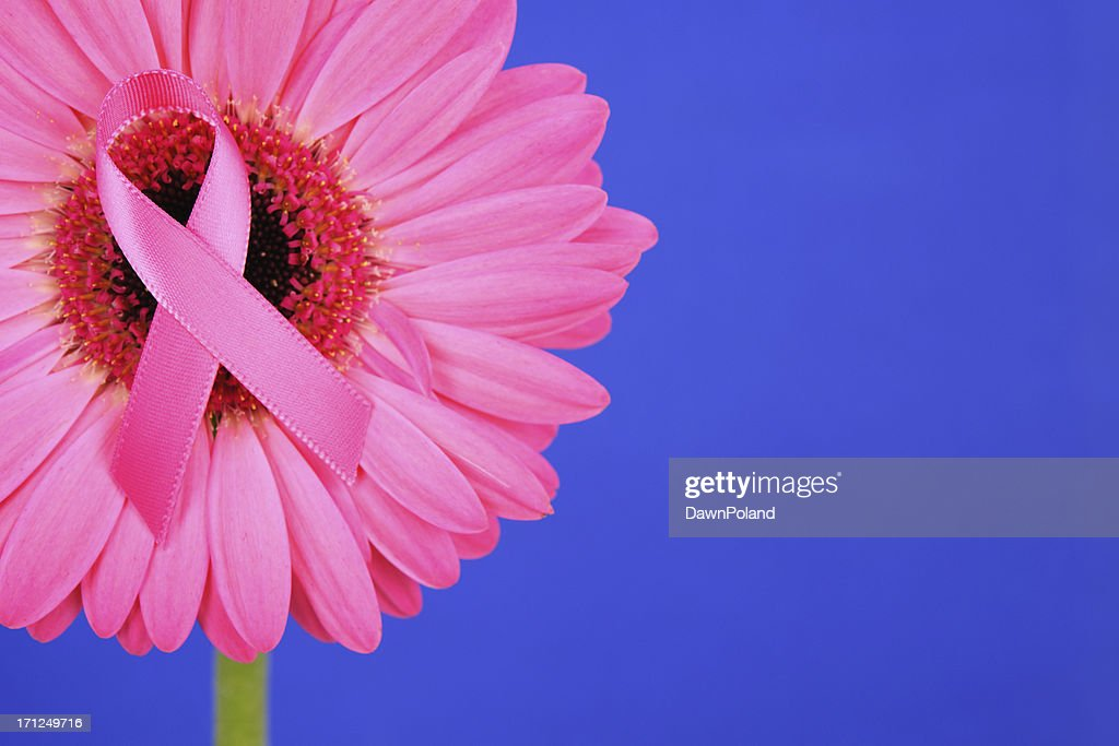 gerbera daisy umbrella breast cancer