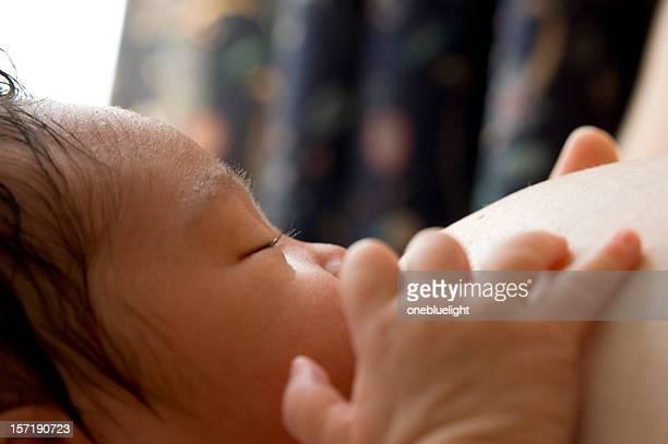 Breastfeeding Newborn Baby Girl