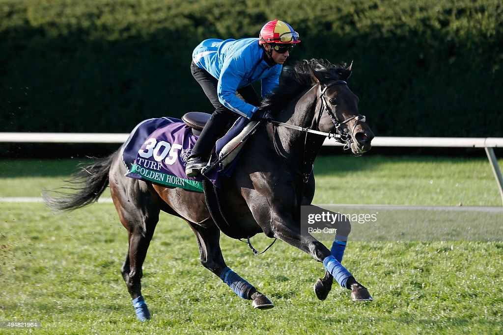 Breeders' Cup Turf entrant Golden Horn trains on the track at Keeneland Racecourse on October 29 2015 in Lexington Kentucky