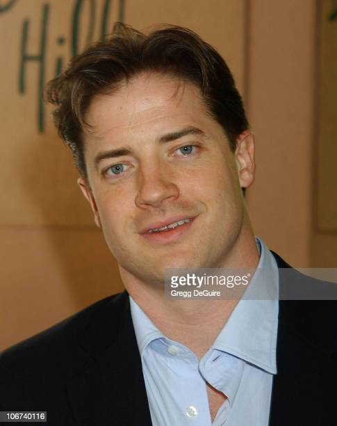 Brendan Fraser during The Hollywood Foreign Press Association Presents $601500 In Donations During Its Annual Installation Luncheon in Beverly Hills...