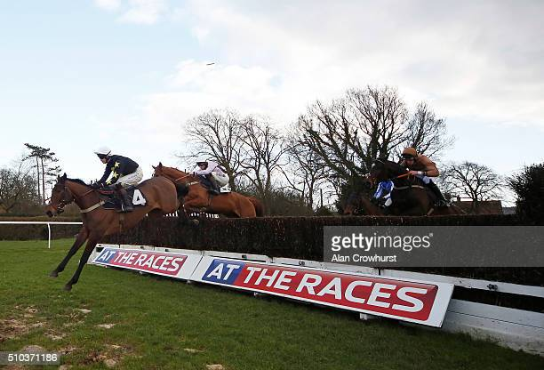 Brendan Powell riding The Cider Maker on their way to winning The At The Races Sky 415 Novices' Handicap Steeple Chase at Plumpton racecourse on...