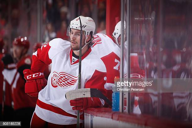 Brendan Smith of the Detroit Red Wings during the NHL game against the Arizona Coyotes at Gila River Arena on January 14 2016 in Glendale Arizona The...