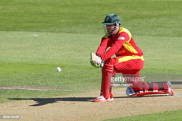 Brendan Taylor of Zimbabwe bats during the 2015 ICC Cricket World Cup match between Zimbabwe and the United Arab Emirates at Saxton Field on February...