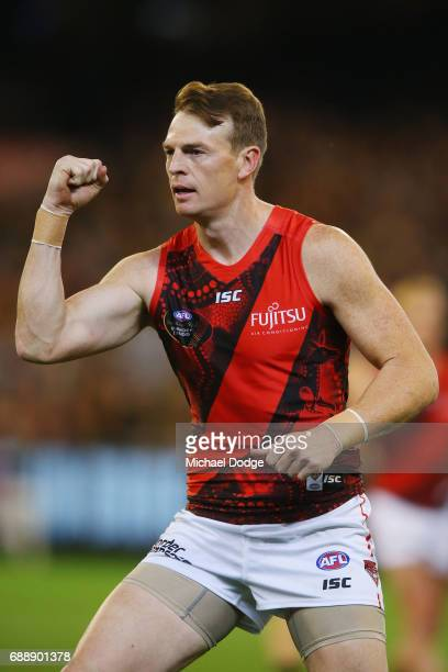 Brendon Goddard of the Bombers celebrates a goal during the round 10 AFL match between the Richmond Tigers and the Essendon Bombers at Melbourne...