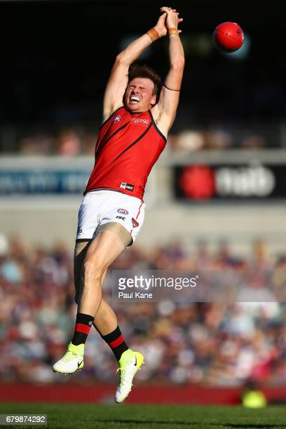 Brendon Goddard of the Bombers spills a mark during the round seven AFL match between the Fremantle Dockers and the Essendon Bombers at Domain...