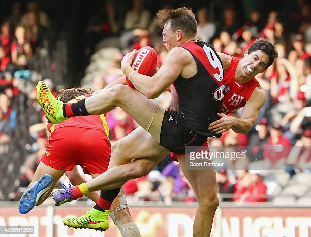 Brendon Goddard of the Bombers takes a mark in the third quarter during the round 22 AFL match between the Essendon Bombers and the Gold Coast Suns...