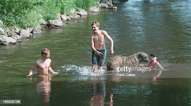 Brennan Lister Matt Trim and Brennan's sister Ryan Lister and their dog DARBY the Irish Wolfhound cool off in the Credit River near The Grange Rd...