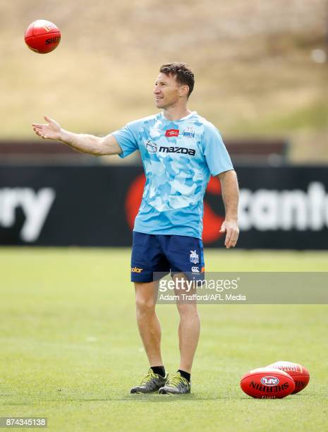 Brent Harvey Development Coach of the Kangaroos looks on during the North Melbourne Kangaroos training session at Arden St on November 15 2017 in...