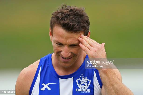 Brent Harvey of the Kangaroos looks on during a North Melbourne Kangaroos AFL training session at Arden Street Ground on September 15 2014 in...