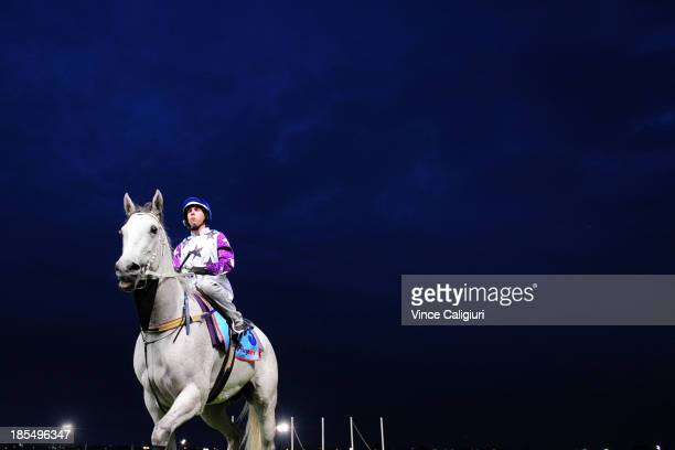 Brenton Avdulla riding Arinosa after galloping at Breakfast with the Stars at Moonee Valley Racecourse on October 22 2013 in Melbourne Australia