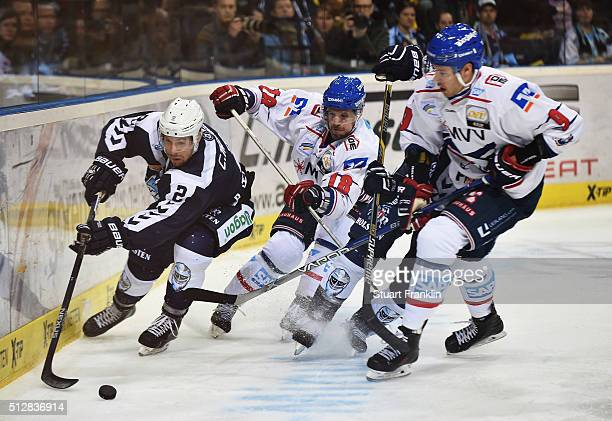 Brett Festerling of Hamburg challenges for the puck with Kai Hospelt and Philip Riefers of Mannheim during the Bundesliga ice hockey match between...