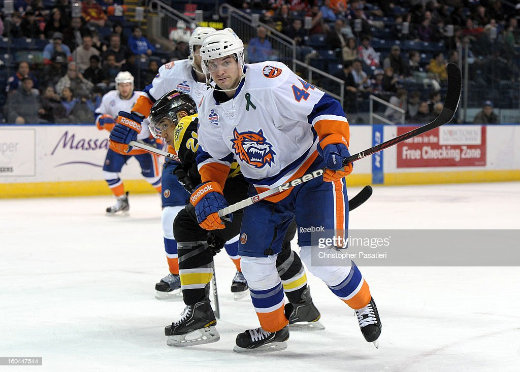 Brett Gallant #44 of the Bridgeport Sound Tigers skates against Bobby Robins #21 of the Providence Bruins during an American Hockey League game on January 31, 2013 at the Webster Bank Arena at Harbor Yard in Bridgeport, Connecticut.