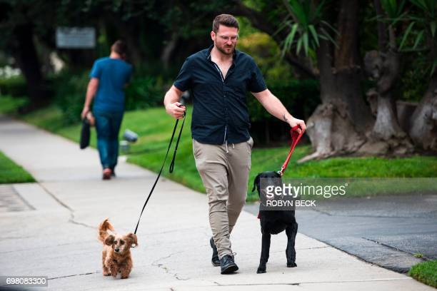 Brett Hartman walks his dogs Cayley a sixyearoldLabrador Retriever and Brutus a 13yearold Dachshund June 7 2017 outside his home in Los Angeles...