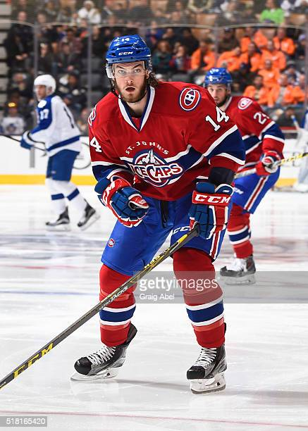 Brett Lernout of the St John's IceCaps watches the play develop against the Toronto Marlies during game action on March 26 2016 at Air Canada Centre...