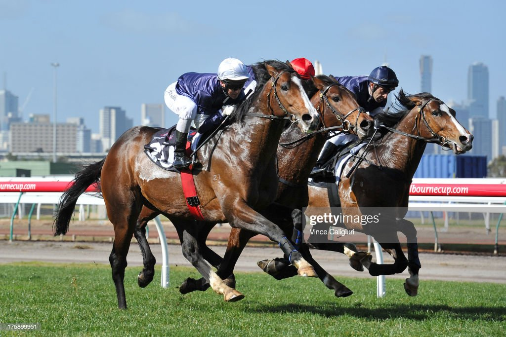 <a gi-track='captionPersonalityLinkClicked' href=/galleries/search?phrase=Brett+Prebble&family=editorial&specificpeople=646298 ng-click='$event.stopPropagation()'>Brett Prebble</a> riding Sea Moon, Steven Arnold riding Masked Marvel and Eddie Cassar riding Seville during a track gallop in between races during Melbourne racing at Flemington Racecourse on August 10, 2013 in Melbourne, Australia.