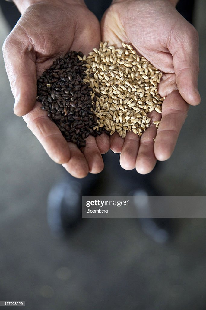 A brewer at the Brasserie Saint Germain brewery, holds a handful of mixed wheat used in the manufacturing process in this arranged photograph at the brewery in Aix-Noulette, in France, on Monday, Nov. 26, 2012. Producers of beer in France, for instance, say any development plans they had have been 'nipped in the bud' by Hollande's plan to boost the tax on the drink next year. Photographer: Balint Porneczi/Bloomberg via Getty Images