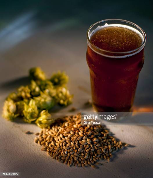 Brewmaster Julian Shrago keeps plenty of Hops and Malt on hand to brew his own beer at home He will be opening up Beachwood BBQ and Brewing in Long...